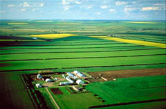 Farm near Acme Alberta