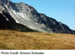View of Frank Slide debris field, Crowsnest Pass