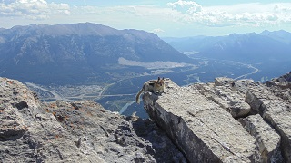 View of Canmore Trans-Canada, from top of Mount Ha-Ling