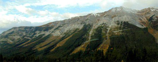 Mountainside Avalanche Tracks, Alberta