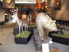 Royal British Columbia Museum Lobby