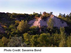 Scarborough Bluffs at Bluffer's Park