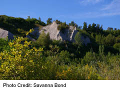 Scarborough Bluffs at Bluffers Park