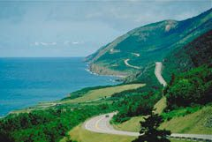 Cabot Trail at Trout Brook