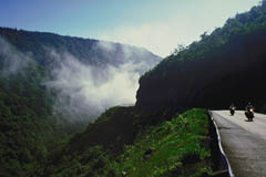 Morning mist along the Cabot Trail