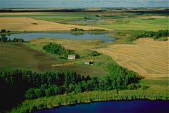 Farm in Cudworth, Saskatchewan
