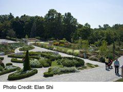 Edward Gardens and Toronto Botanical Gardens