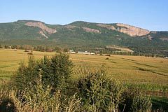 Mountains behind farmland at Enderby
