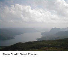 Gros Morne view