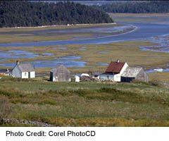 Scenic Highland farm in Cape Breton