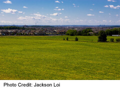 fields near Maple