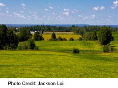 York Region's rural wid open spaces