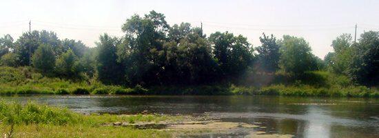 Scenic lake in a Kitchener Park