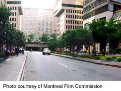 view along McGill College Avenue