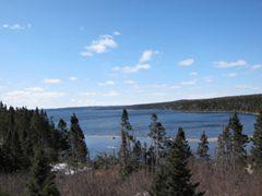 view of Gander Lake