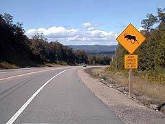 1 Mile Hill at Heyden, on Highway 17