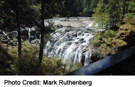 Englishman River Falls near Parksville