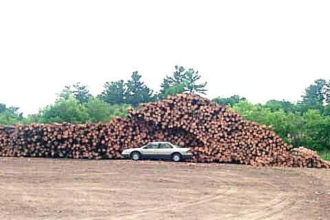 Lumber pile just west of Pembroke