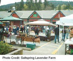 Saltspring Island-Saturday Market