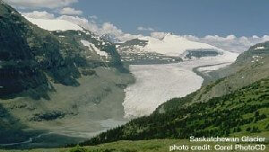 Saskatchewan Glacier photo