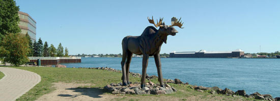 Moose sculpture along St Mary River