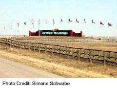 Spruce Meadows Sign on highway 22X