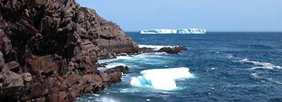 Icebergs just off the St Joh;s coastline