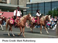 Western Riders in the Stampede Parade