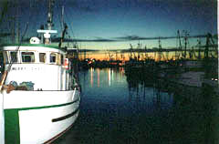 Steveston Fishing Boats at Night