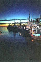 Fishing baots moored at Steveston Harbour on the Fraser River in B.C.