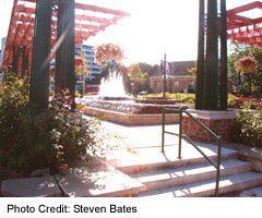 Stoney Creek Square