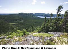 Terra Nova National Park hills