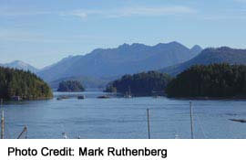 Rugged views from the Tofino waterfront
