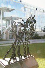 Horse Sculpture at the University of Saskatchewan