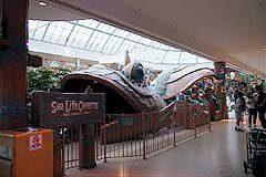 Sea Life Caverns at West Edmonton Mall