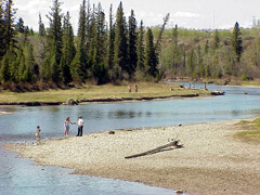Elbow River winding through the Weaslehead Area