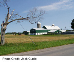 Barn near Oshawa, Ontario