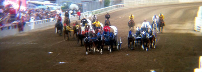 Catch the chuckwagon races from the Grandstand, from the Infield, or from Rush seating/standing