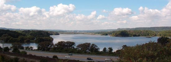 Cootes Paradise view