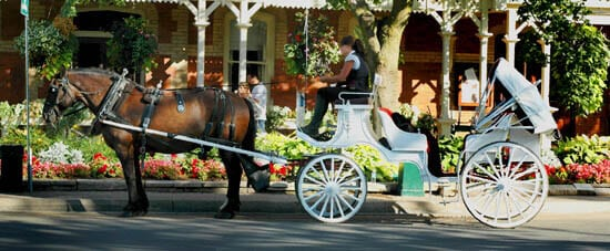 Niagara on the Lake's horse-drawn carriages