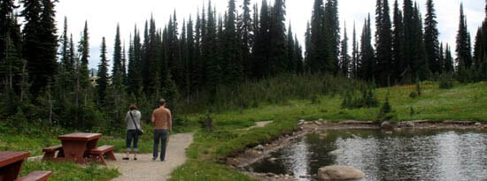 Revelstoke: Meadow-To-Mountain view of Balsam Lake