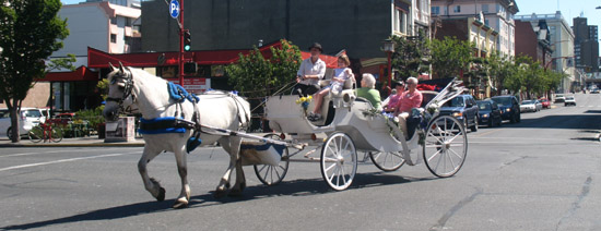 Victoria-Inner Harbour Horse-Drawn Carriage Rides