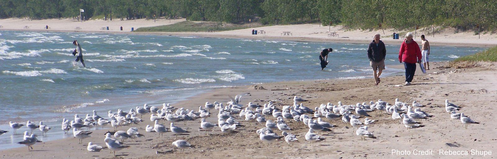 Quinte - Sandbanks Provincial Park - Lake Ontario - sliver (Rebecca Shupe)