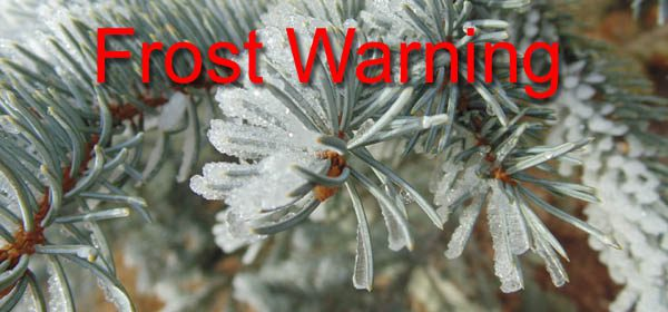 Weather-Frost Warning 2