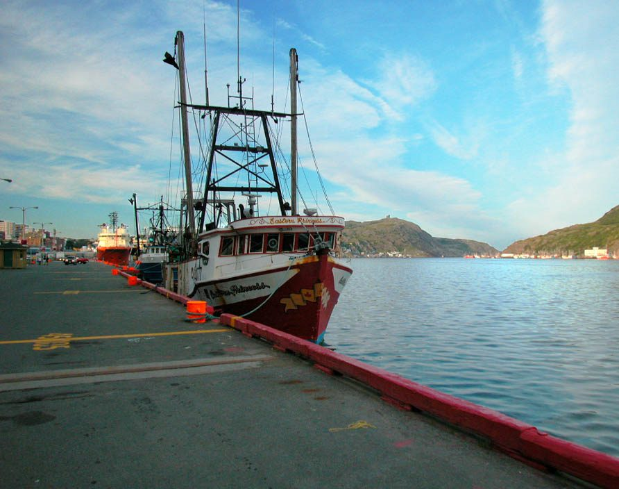 Boats with St John's Harbour View (photo by Mike Mahoney)