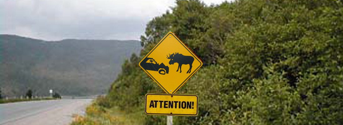 Moose Caution Sign in Newfoundland