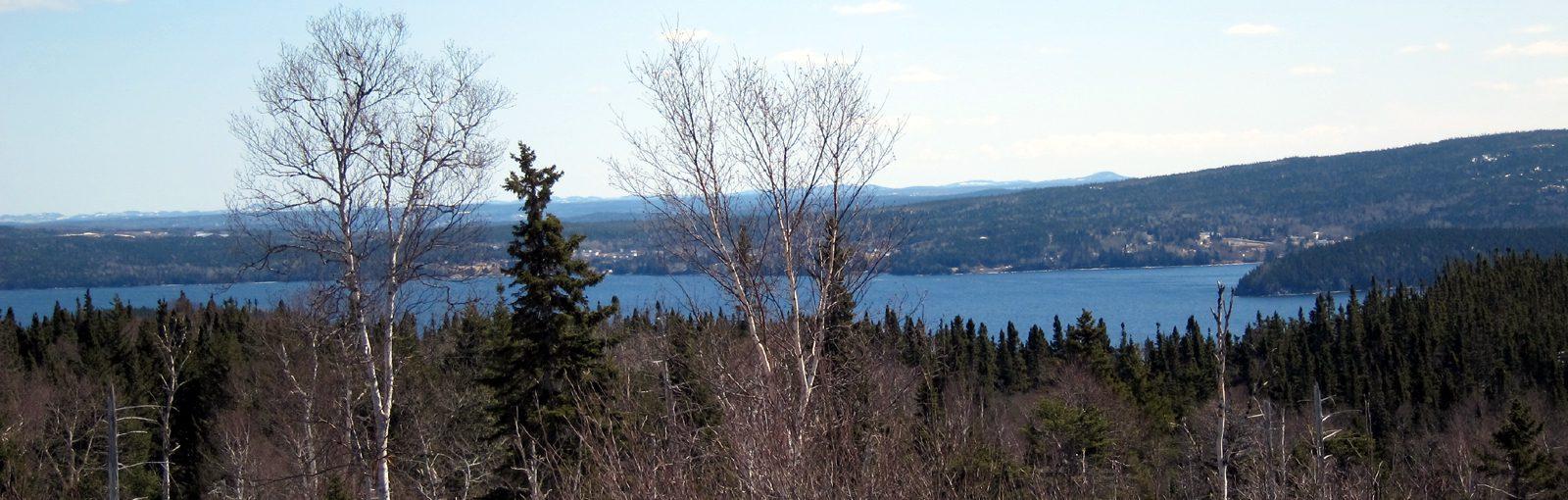 Gander Lake, Newfoundland - sliver
