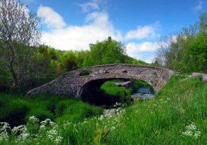 Bowring Park Bridge