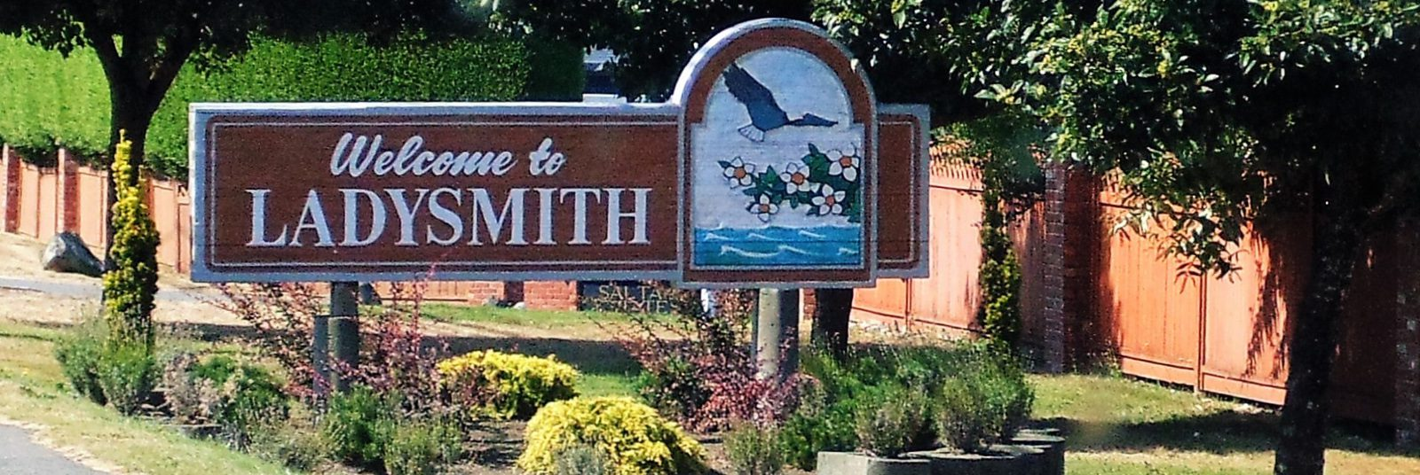 Ladysmith Welcome Sign -sliver